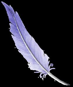 pluma.www.milesdetextos.com